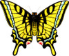 "New Tech kites- Silk Butterfly ""Swallowtail"""
