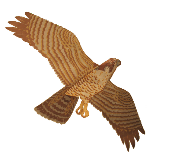 Jackites - Peregine Falcon (unassembled)