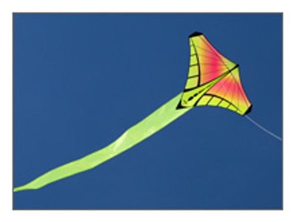 Prism Designs - Mantis Single line kite