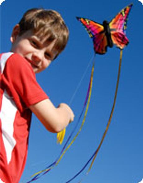 "HQ Kites - Butterfly Kite Buckeye Blue ""R"""