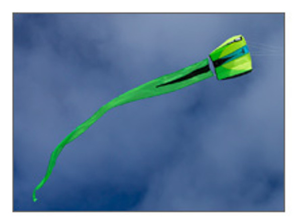 Prism Designs - Bora 2 Single line kite