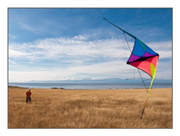 Prism Designs - Jazz Stunt kite