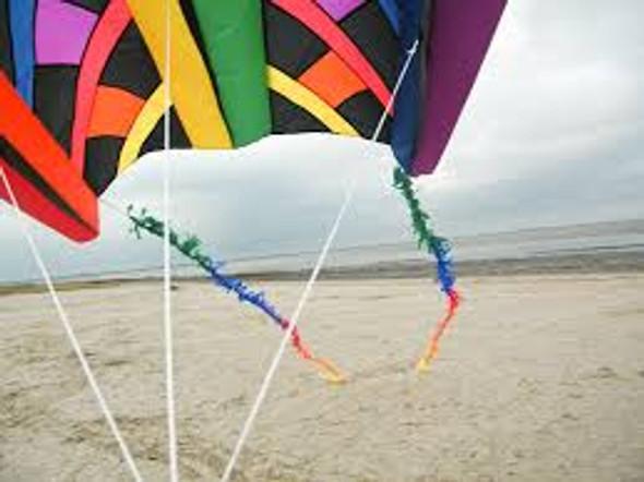 HQ Kites - FuzzyTail 20m