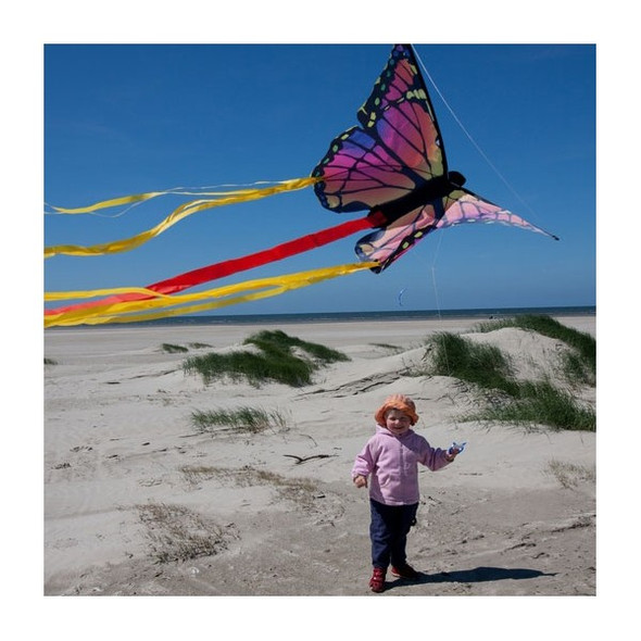 "HQ Kites - Butterfly Kite Ruby ""R"""