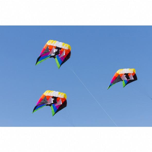 HQ Kites - Flowform 7.0