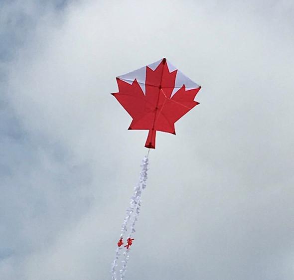 KG - Canadian Maple Leaf Custom Designer series - Sharon Musto