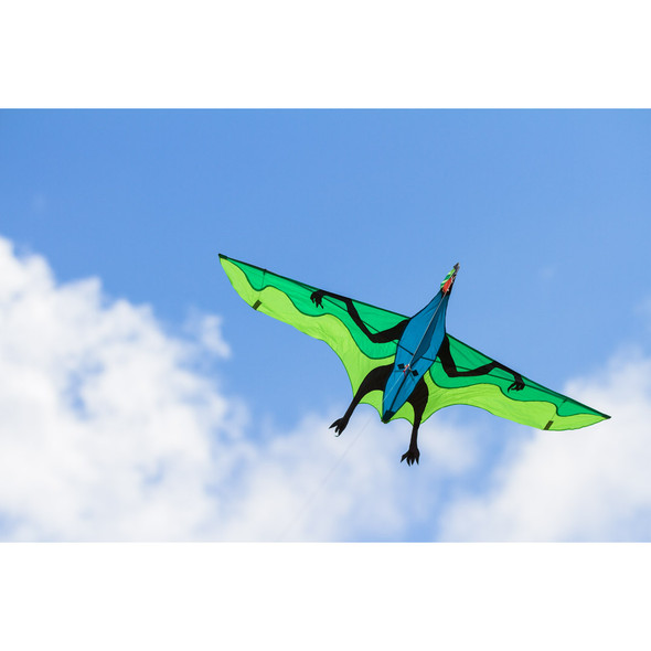 "HQ Kites - Flying Dinosaur 3D ""Joel Sholtz"""