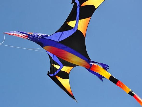 Premier kites - Pterodactyl Kite - Black Wing