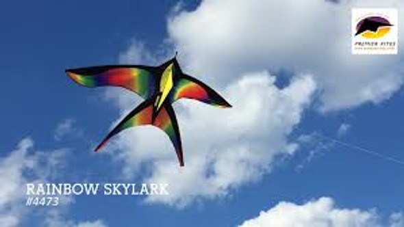 Premier kites - 5.5 ft. Rainbow Skylark Kite