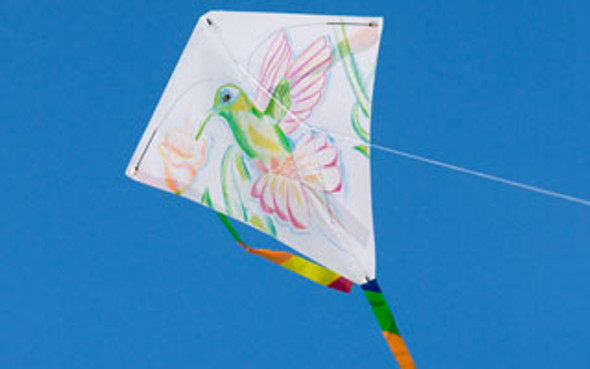 "HQ Kites -  Kid's Creation ""Eddy"""