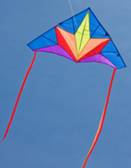 "HQ Kites - Simple Flyer ""Delta Stern"""