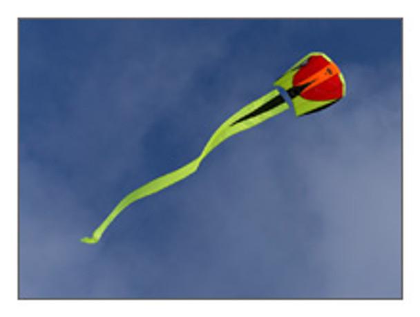 Prism Designs - Bora 2 Single line kite
