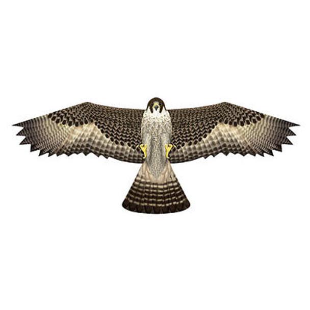 """XKites - Birds of prey Kite  """"Falcon"""""""