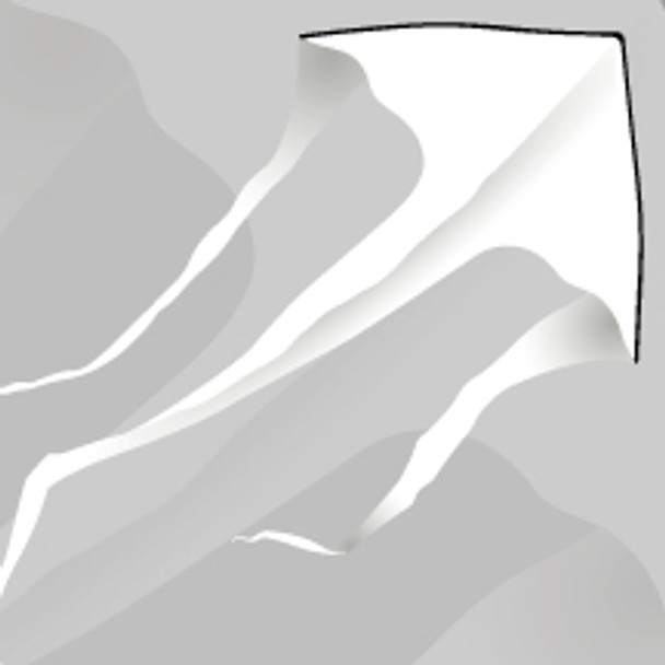 "New Tech kites - Cascade Delta 6' ""White"""