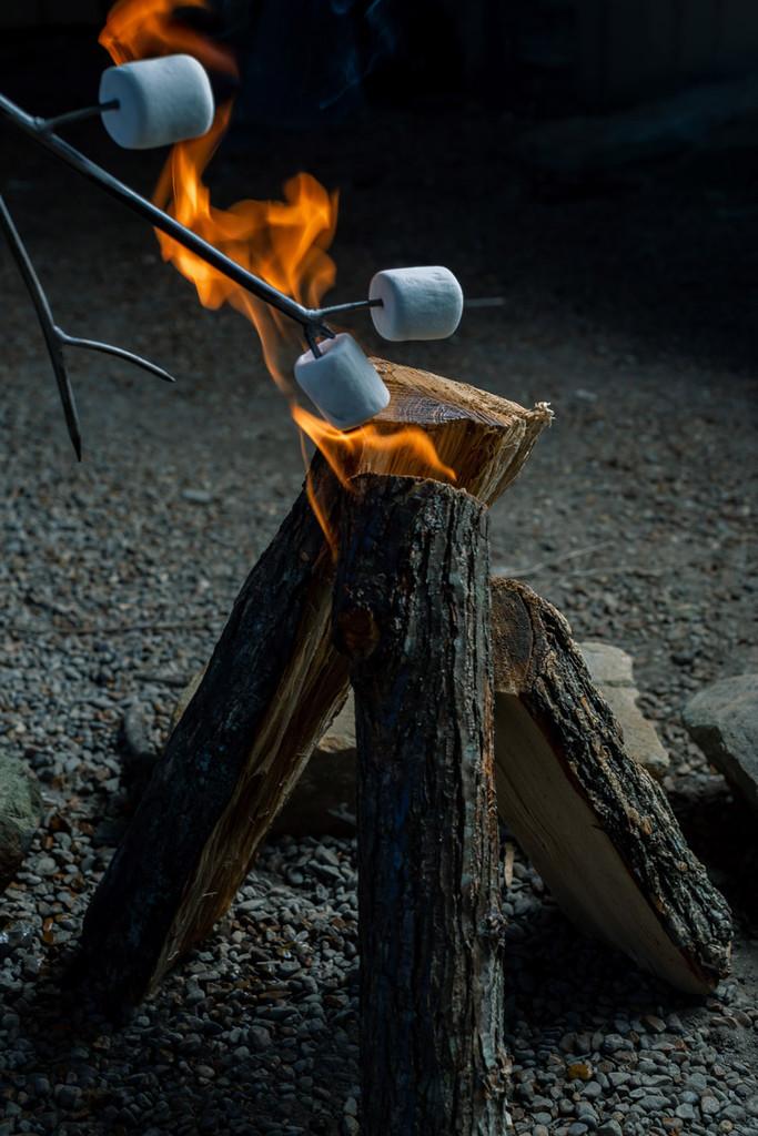 Heirloom Iron Marshmallow Roaster