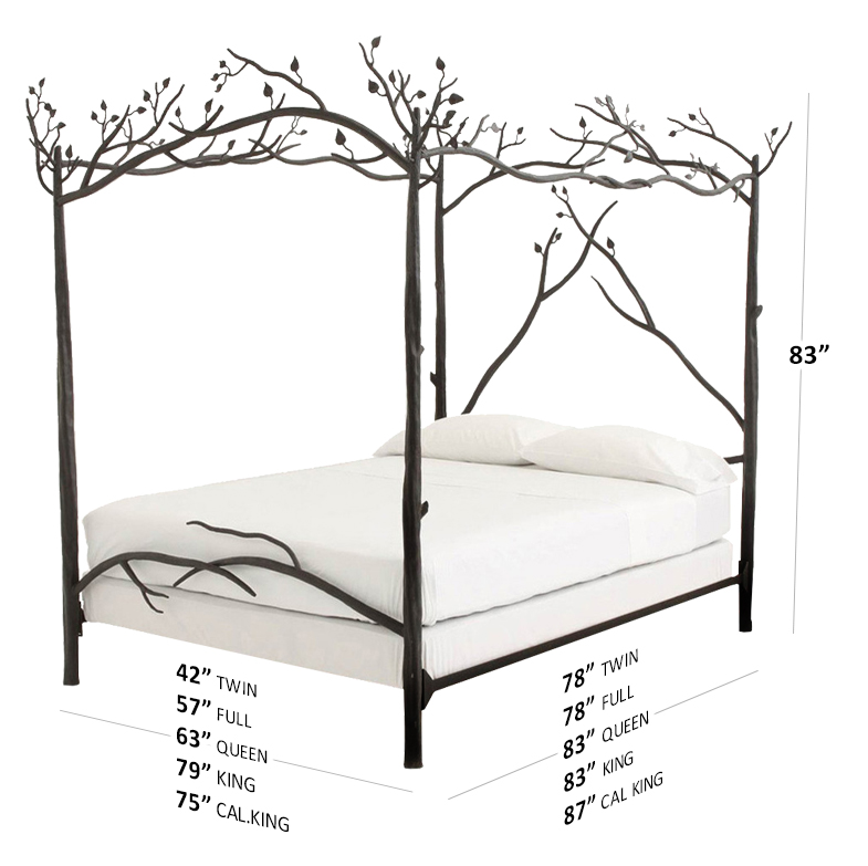 bed-dims-forest-canopy.jpg