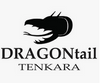 DRAGONtail Tenkara
