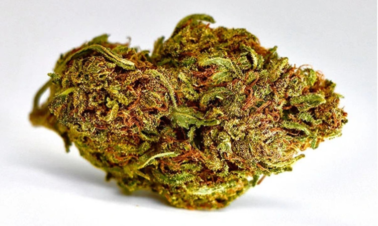 Cherry Pie Hemp Flower  Rich, deep aromatic buds, this flower will engulf and captivate you. Featured Terpenes: b-Caryophyllene and Linalool This highly sought after strain is potent, sweet, and effective. A thin layer of terpene-rich trichomes drench every concentrated nug, leaving behind a sticky trail of crystallized resin when broken up.