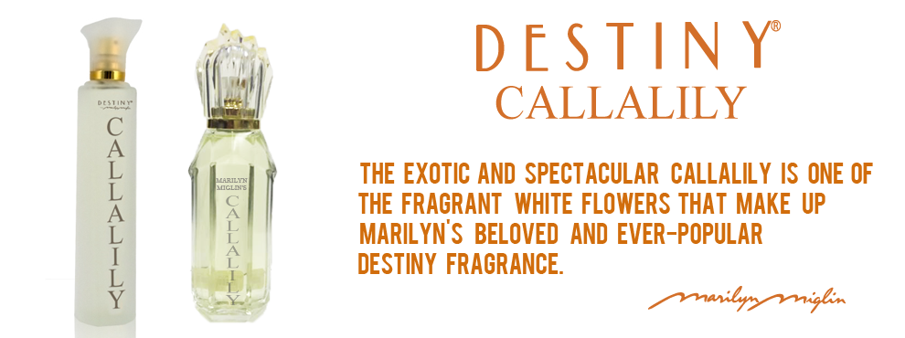 Destiny Callalily Banner