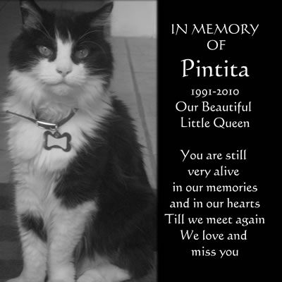 Aluminium Pet Memorial Plaques