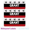 Personalized Name Labels: Drum Superstar (More Colors!)