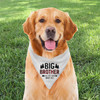 Personalized Dog Bandana: Perfectly Plaid Big Brother