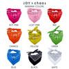 Personalized Bandana Colors - Joy & Chaos
