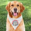Mod Holiday Rainbow Personalized Dog Bandana