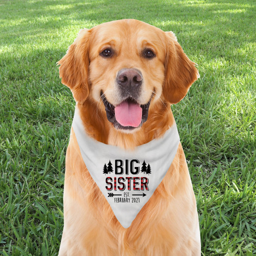 Personalized Dog Bandana: Perfectly Plaid Big Sister