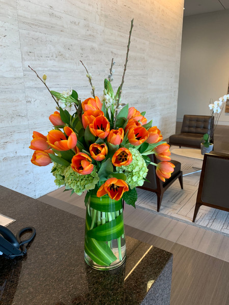 Tulips in clear glass vase