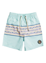 """Quiksilver Boys Sun Faded 15"""" Recycled Volleys"""