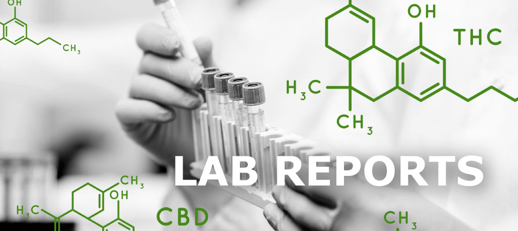 lab-report.jpg