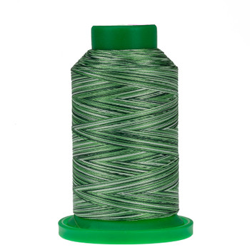 9805 Shades of Grass Isacord Variegated Thread