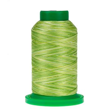 9868 Limeade Isacord Variegated Thread