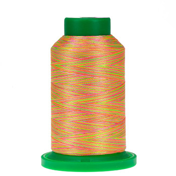 9914 Neon Brights Isacord Variegated Thread