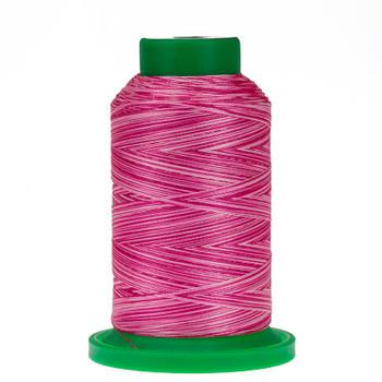 9923 Rasberries & Cream Isacord Variegated Thread