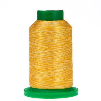9925 Saffron Isacord Variegated Thread