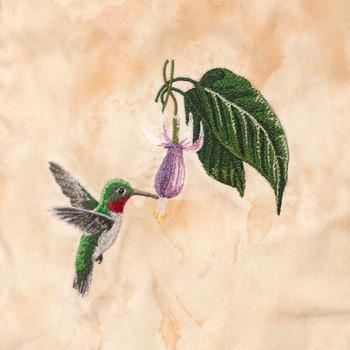 Hummingbird Dance by The Hautman Brothers