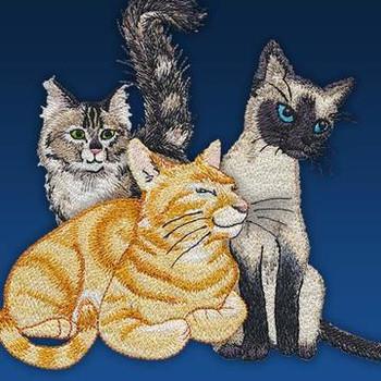 Caturdays by Mo's Art Design Studio