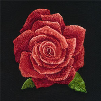 Radiant Roses by Laurie Snow Hein