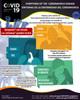COVID19 Coronavirus Safety Poster, Symptoms, English/Spanish