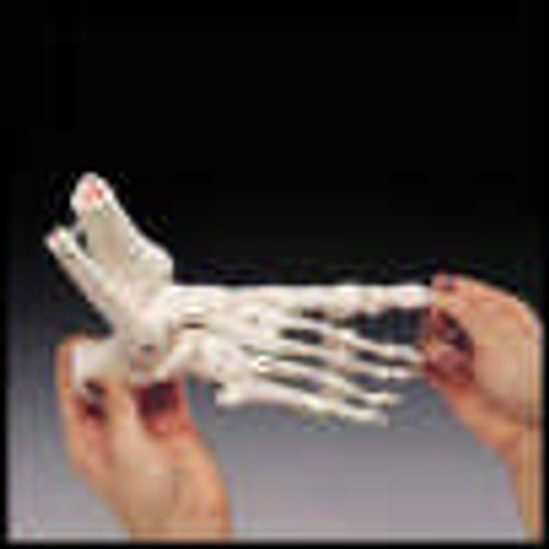 Foot Model-Rigid Skeletal Foot Model -Left Handed