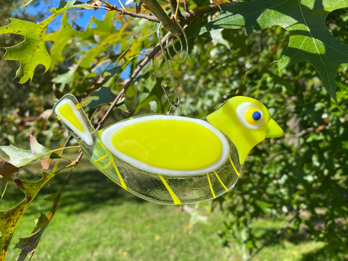 Yellow Streamer Songbird
