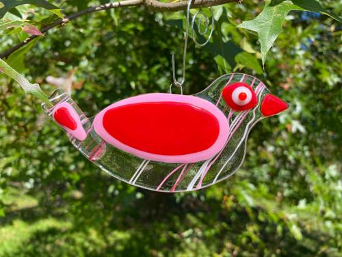 Pink & Red Streamer Lovebird