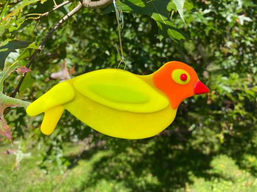 Orange Yellow Songbird