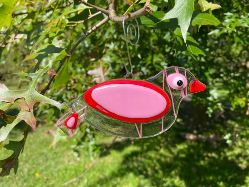 Pink Streamer Lovebird