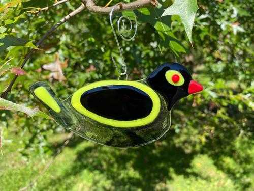 Smokey Yellow-Winged Songbird