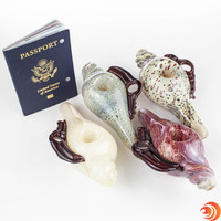 """These 6"""" glass snail shells come in a variety of colors from Atomic Blaze Smoke Shop."""