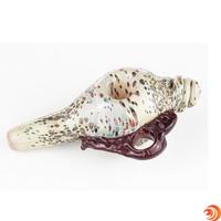 "Get a 6"" speckled snail shell at Atomic Blaze Smoke Shop Online."