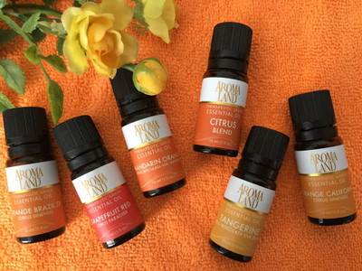 Top 7 Questions Answered for People New to Essential Oils